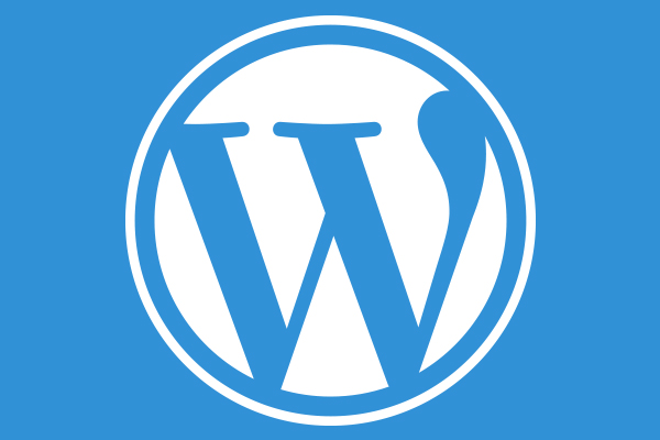 """The """"must-knows"""" of WordPress Plug-ins! Everything About Them."""